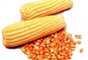 Aluá de Milho ou Abacaxi